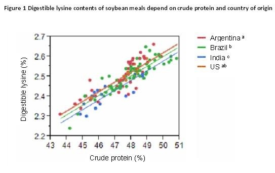 Figure 1 Digestible Lysine contents of soybean meals depend on crude protein and country of origin
