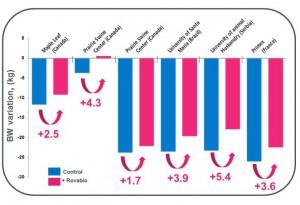 Figura 1: Resultados de 6 estudos no mundo. Perda de peso durante a lactação
