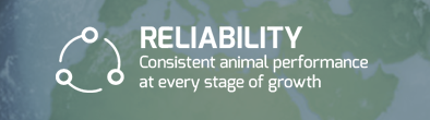 RELIABILITY: Consistent animal performance at every stage of growth