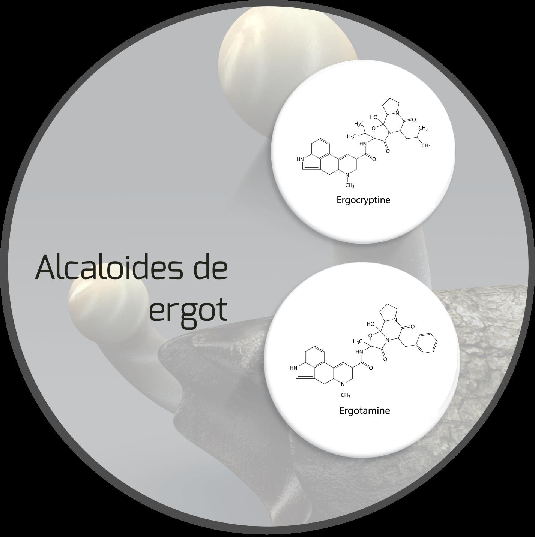 mycotoxin-claviceps-mycotoxin