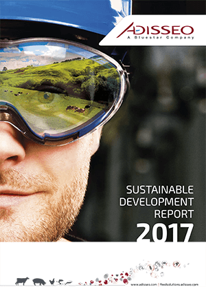 Sustainable development report 2017