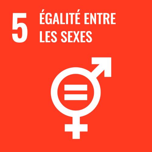 5 - Egalité entre les sexes