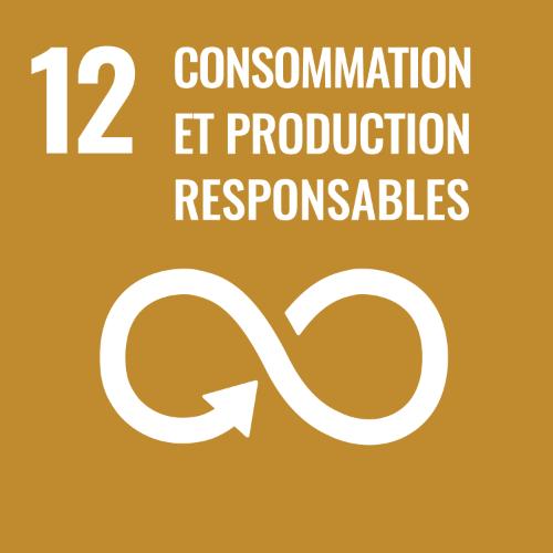 12 - Consommation et production responsables
