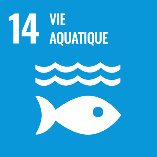14 - Vie Aquatique