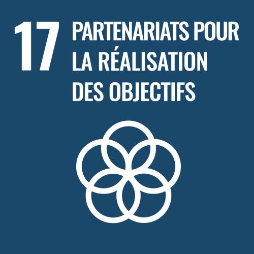 17 - Partenariats pour la réalisation des objectifs