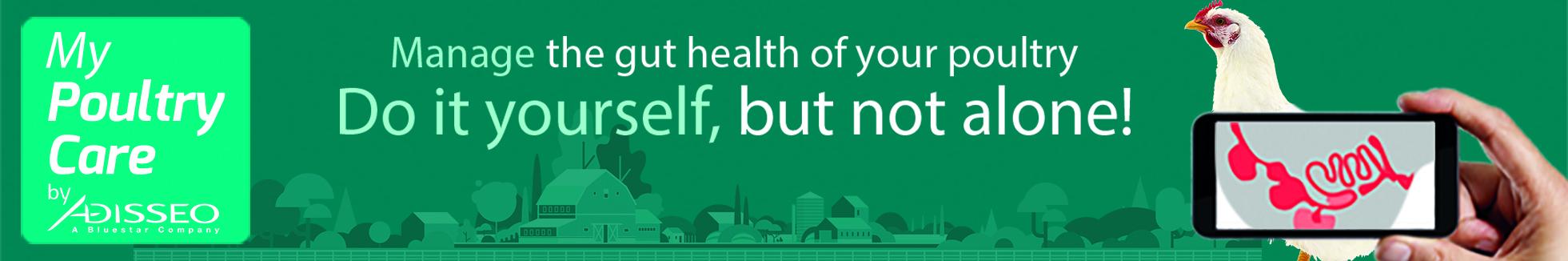 MyPoultryCare app for poultry gut health desease detection.